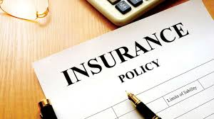 insurance period Dictionary